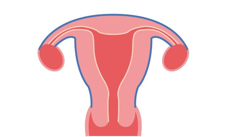月经有这个特点,当心卵巢早衰!